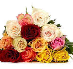 13 mixed roses