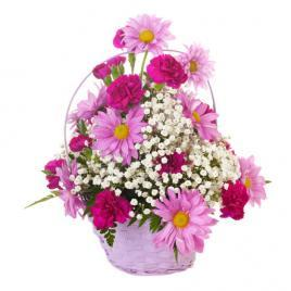 Basket of colourful daisies