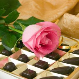 Rose + chocolates