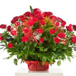 71 red roses in a basket